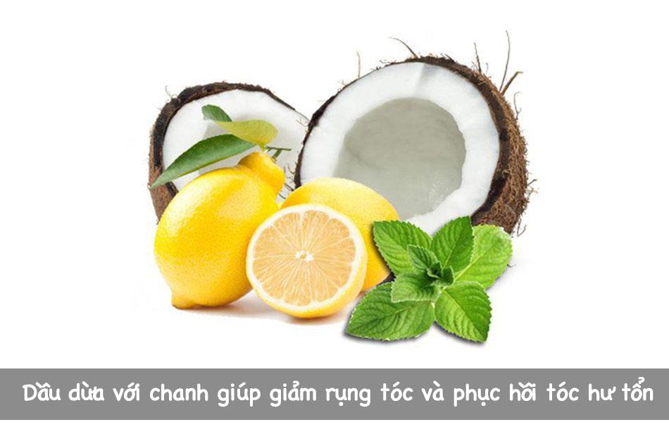 Dầu dừa với chanh giúp giảm rụng tóc và phục hồi tóc hư tổn